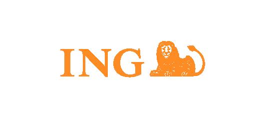 partner_ing